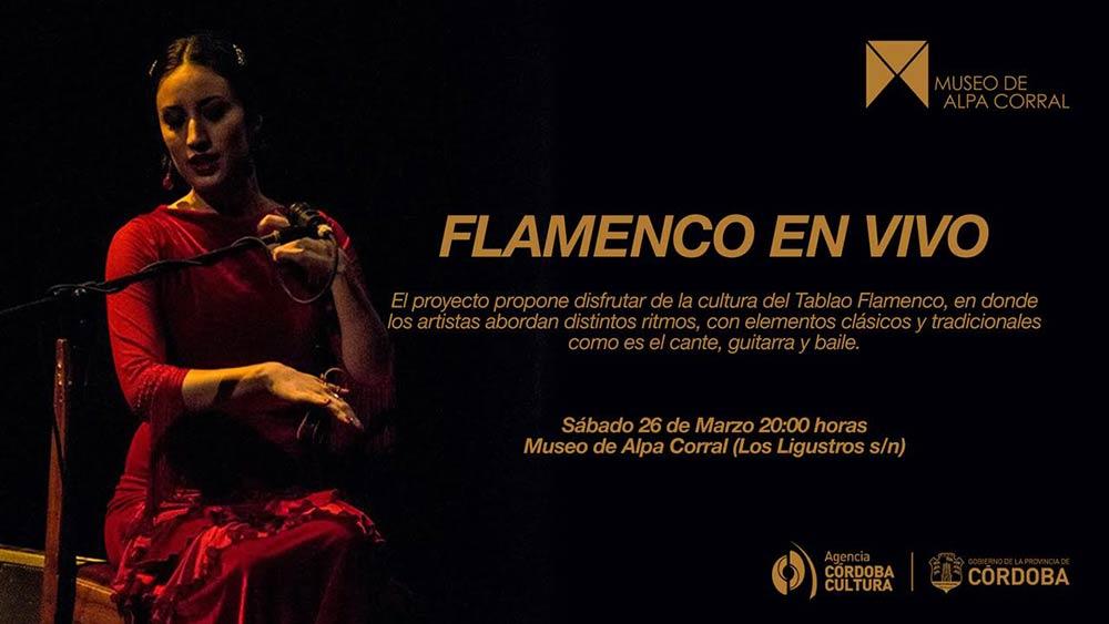 flamenco-en-vivo-banner