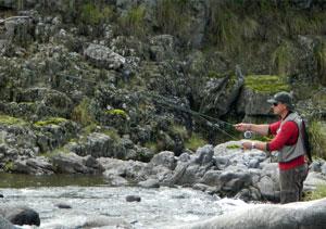 • Fly Cast o pesca con mosca en Alpa Corral
