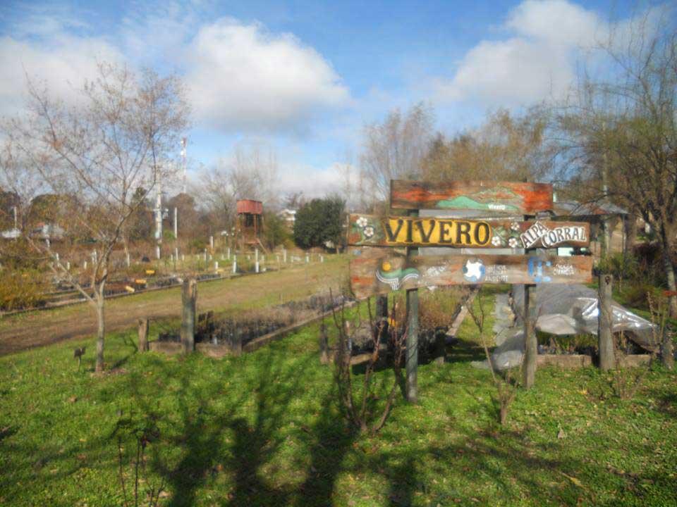 Siembra de especies nativas para celebrar la primavera for Vivero municipal